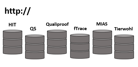 Icon Internetdatenbanken