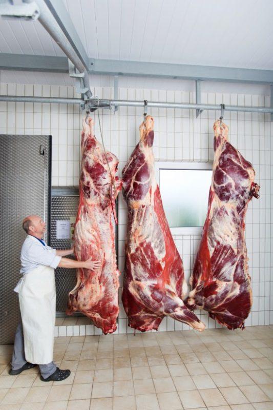 Schlachtung Rind
